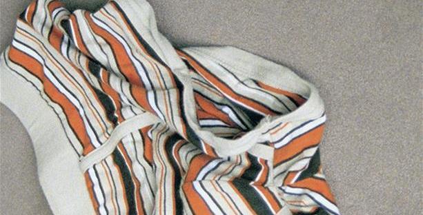 Boxer orange, noir et blanc sur fond gris