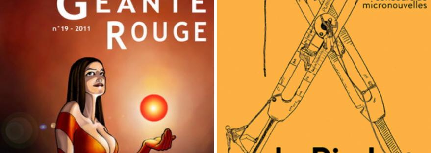 Défenestration est un texte de jeunesse, une micro-nouvelle de science-fiction rédigée à l'origine pour le Prix Pépin 2010. Elle a été republiée en 2016 dans la revue littéraire Le Pied. Texte à découvrir sur lilitherature.com.
