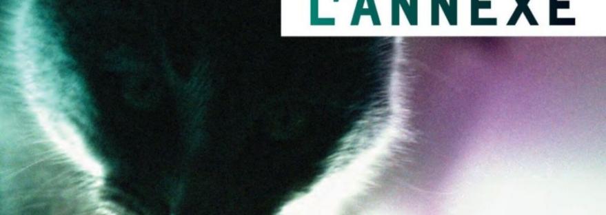 L'annexe, paru le 28 août 2019 chez Héliotrope, est le dernier roman en date de Catherine Mavrikakis. L'auteure québécoise y prend pour point de départ le roman d'espionnage et le déconstruit. Avis lecture sur lilitherature.com.